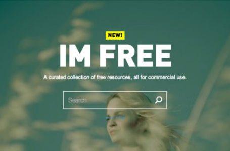 Diritto di Autore e libere utilizzazioni in Internet