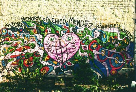 Il VARA e la Street Art